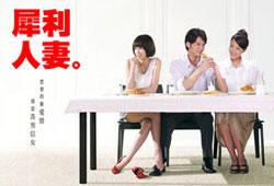 The Fierce Wife / 犀利人妻