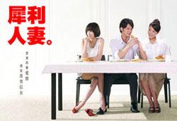 The Fierce Wife / 犀利人妻