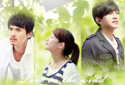 love in the wind 2012drama