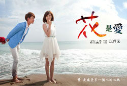 what is love 2012drama
